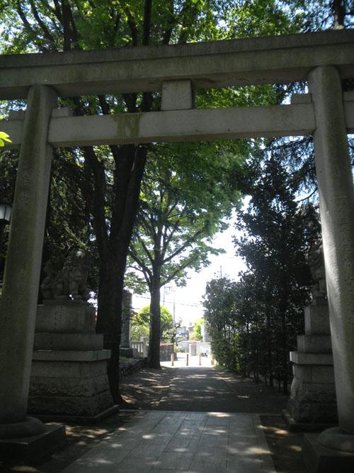 諏訪神社(立川)25