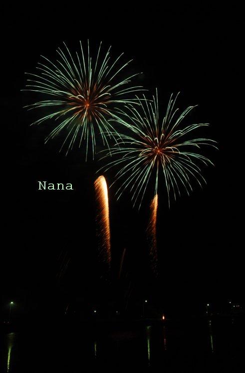 fireworks1-11.jpg