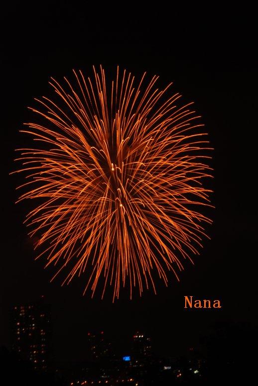 fireworks1-7.jpg