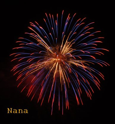 fireworks1-8.jpg