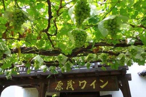 原茂ワイン