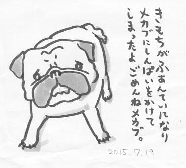 mr2015719.jpg