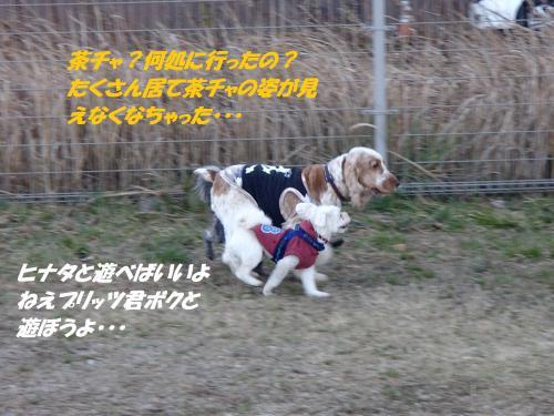 P1180183_convert_20150119105034.jpg