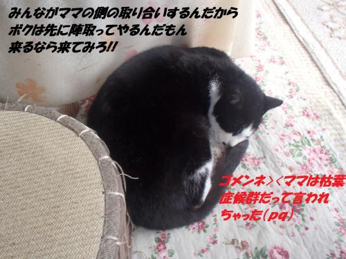 P1280276_convert_20150130074517.jpg
