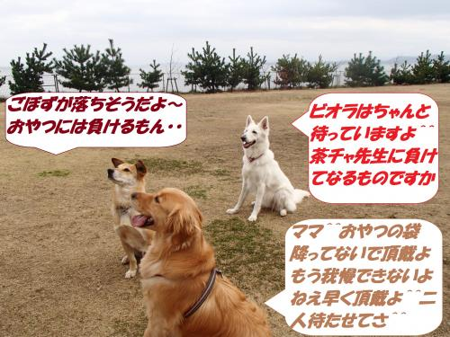 P2260646_convert_20150227144539.jpg