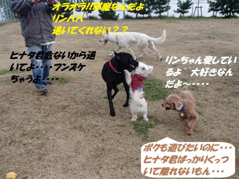 PC230296_convert_20141224143546.jpg