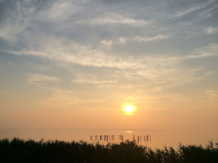 dawn10.jpg