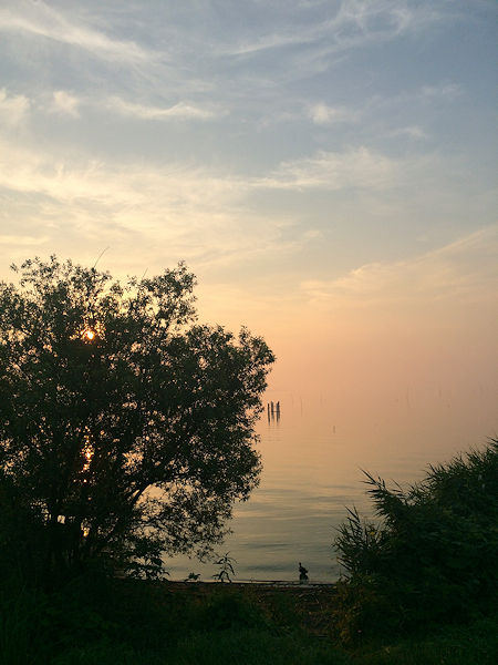 dawn9.jpg