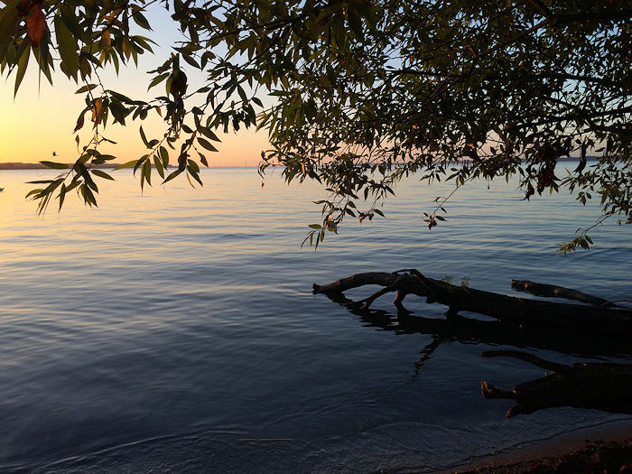 morning-calmness.jpg