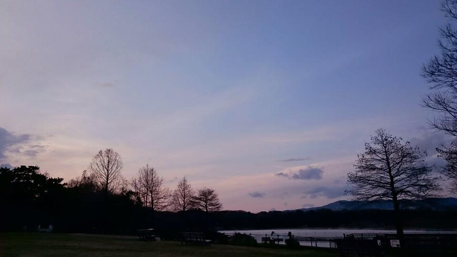 今日の夕空@昆陽池公園