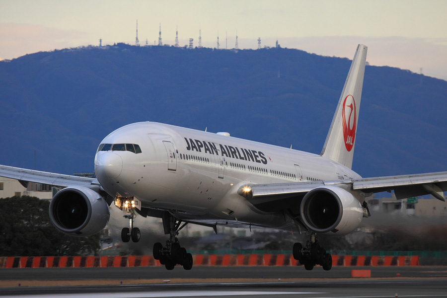 JAL B777-289 / JAL125 (JA009D)@伊丹スカイパーク