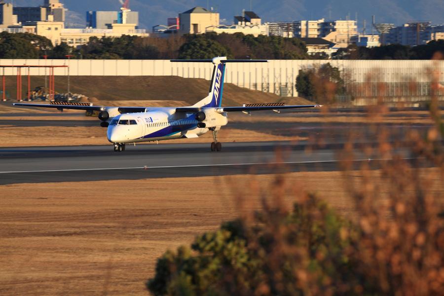 ANA WINGS DHC-8-402Q / ANA1612 (JA842A)@伊丹スカイパーク