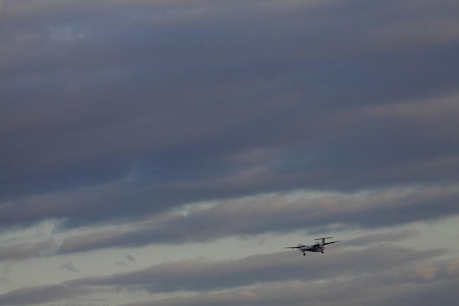 ANA WINGS DHC-8-402Q / ANA1628 (JA848A)@伊丹スカイパーク