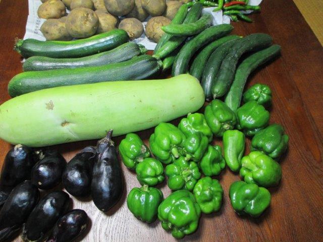遠野の夏野菜1