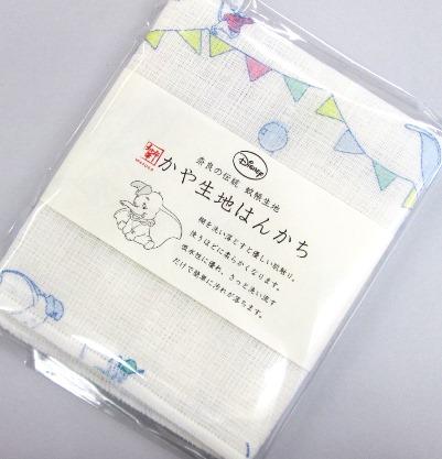 テヌグイスイカなど (17)