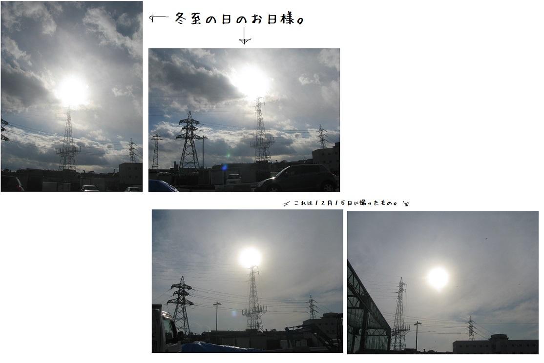 IMG_8375冬の日差し