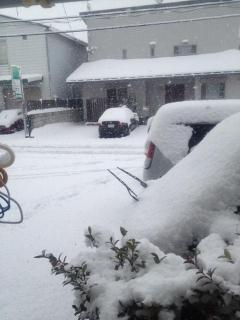 次の日の雪