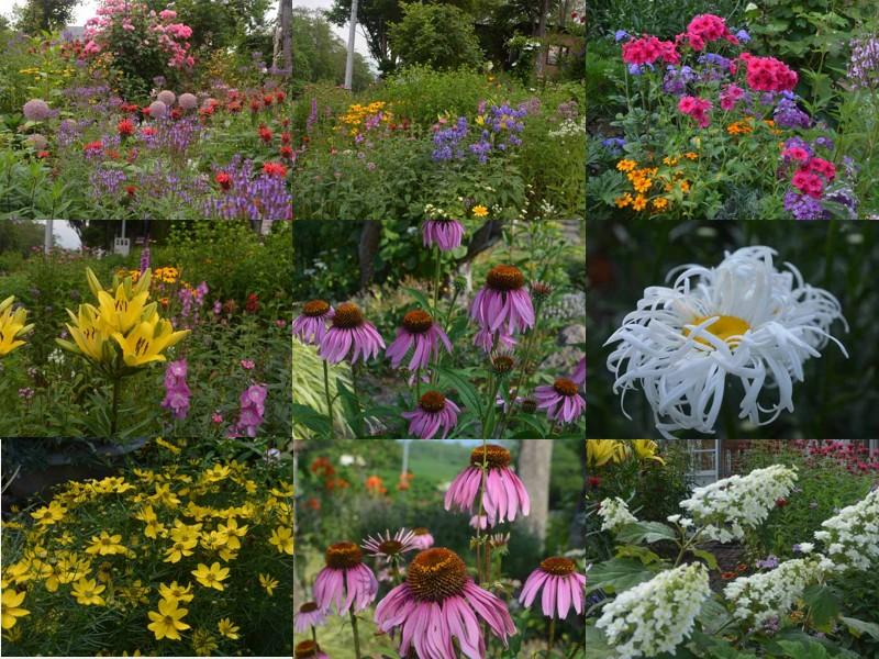 malino_garden2.jpg