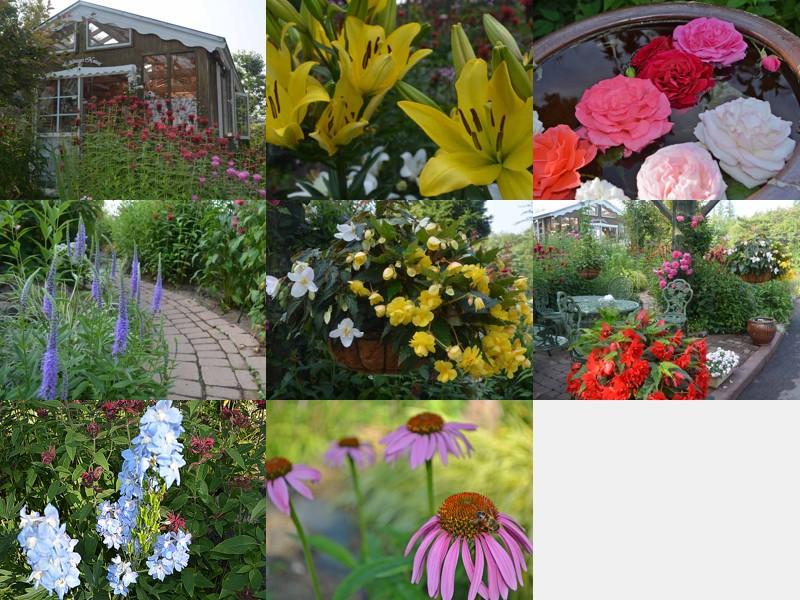 malino_garden3.jpg