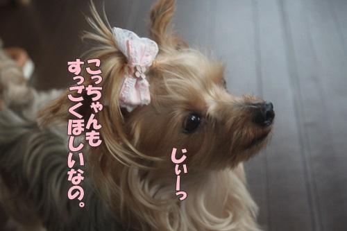 IMG_55890.jpg