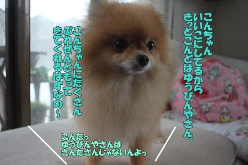 IMG_56170.jpg