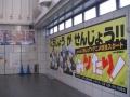 PIC_3868.jpg