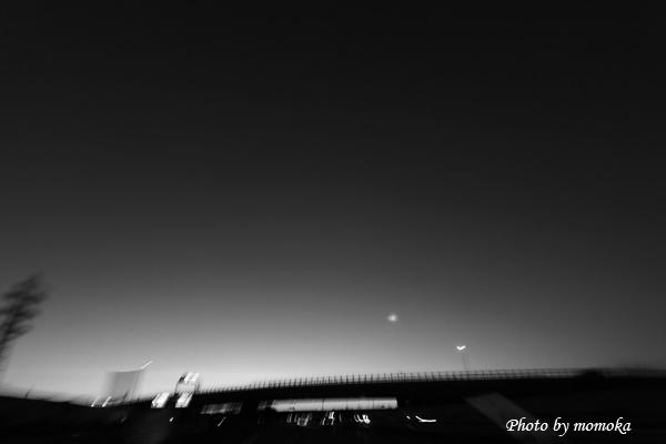 _MG_3464.jpg