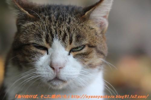 IMG_7724_blog.jpg