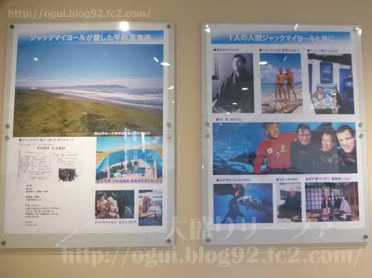 館山渚の駅たてやま海辺の広場渚の博物館014