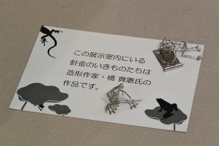 西尾市岩瀬文庫企画展 山田満寛氏記念 虫愛づる人々