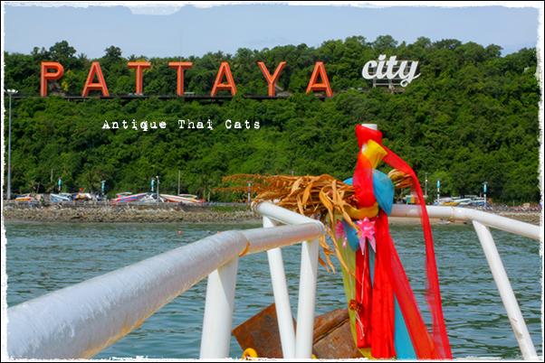 パタヤ pattaya
