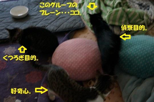 20150109-06.jpg