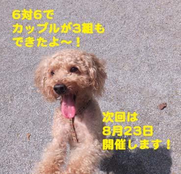 DSCF3272.jpg