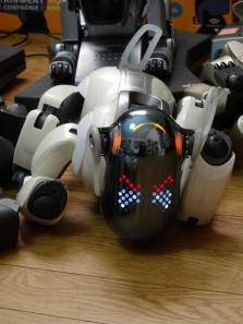 足の故障を抱える5代目AIBO