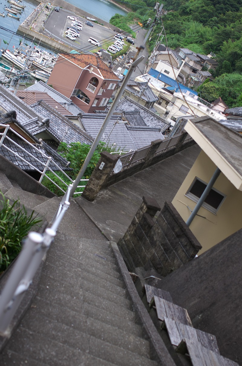 和歌山県海南市下津町 猫