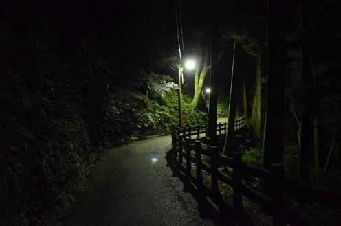 箕面の山道 夜2