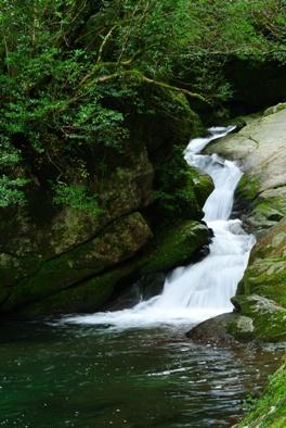 屋久白谷14小お谷が滝