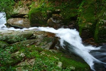 屋久白谷16小お谷が滝落ち口