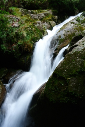 屋久白谷17岩道の滝