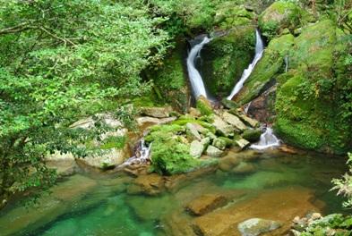 屋久白谷22おしどりの滝