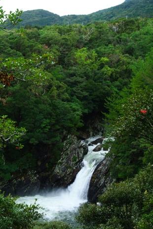 屋久島2日目昼2トローキの滝