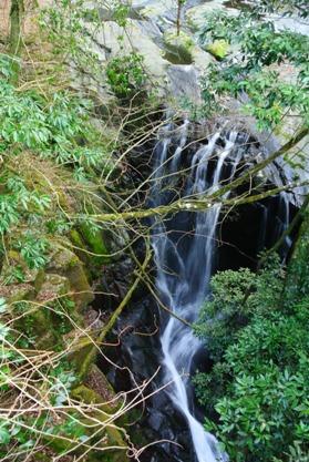 菊池渓谷再訪14掛幕の滝
