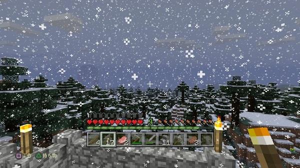 PS4 Mincraft マインクラフト プレイ日記 初見プレイ 感想 面白い