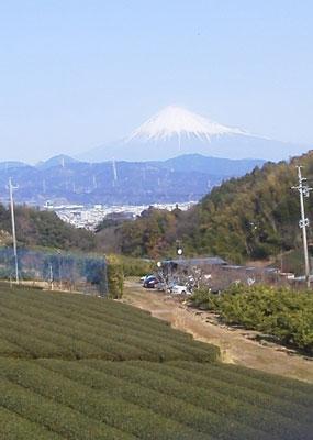 1501富士山2