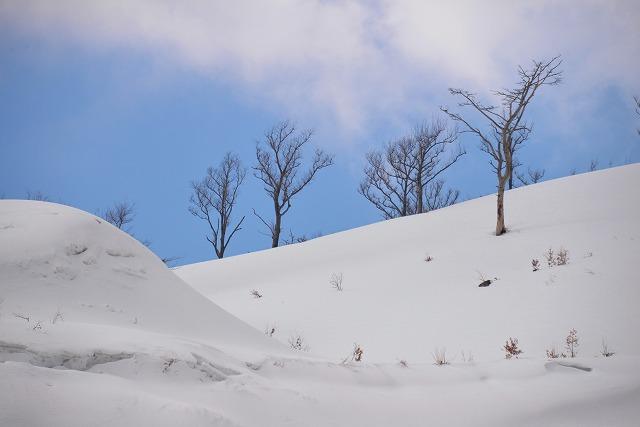 深入山 15