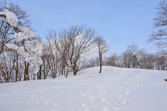 臥龍山山頂12