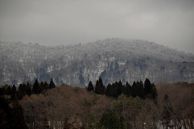 早春の北広島7
