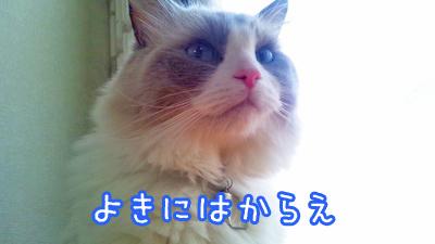 20150818007.jpg