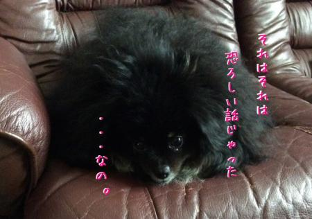 IMG_1526_convert_20150818143854.jpg