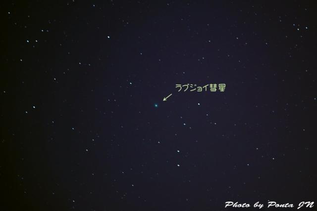 lovejoy150113 (1)a